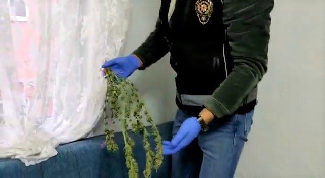 Uşak İl Emniyet Müdürlüğü'ne Bağlı Narkotik Şube Müdürlüğü Ekipleri Tarafından Edinilen İstihbarat Doğrultusunda